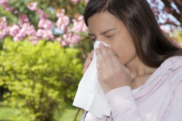 Jeg er gravid og har høfeber. Hvilke allergipiller, næsespray og øjendråber må jeg anvende?