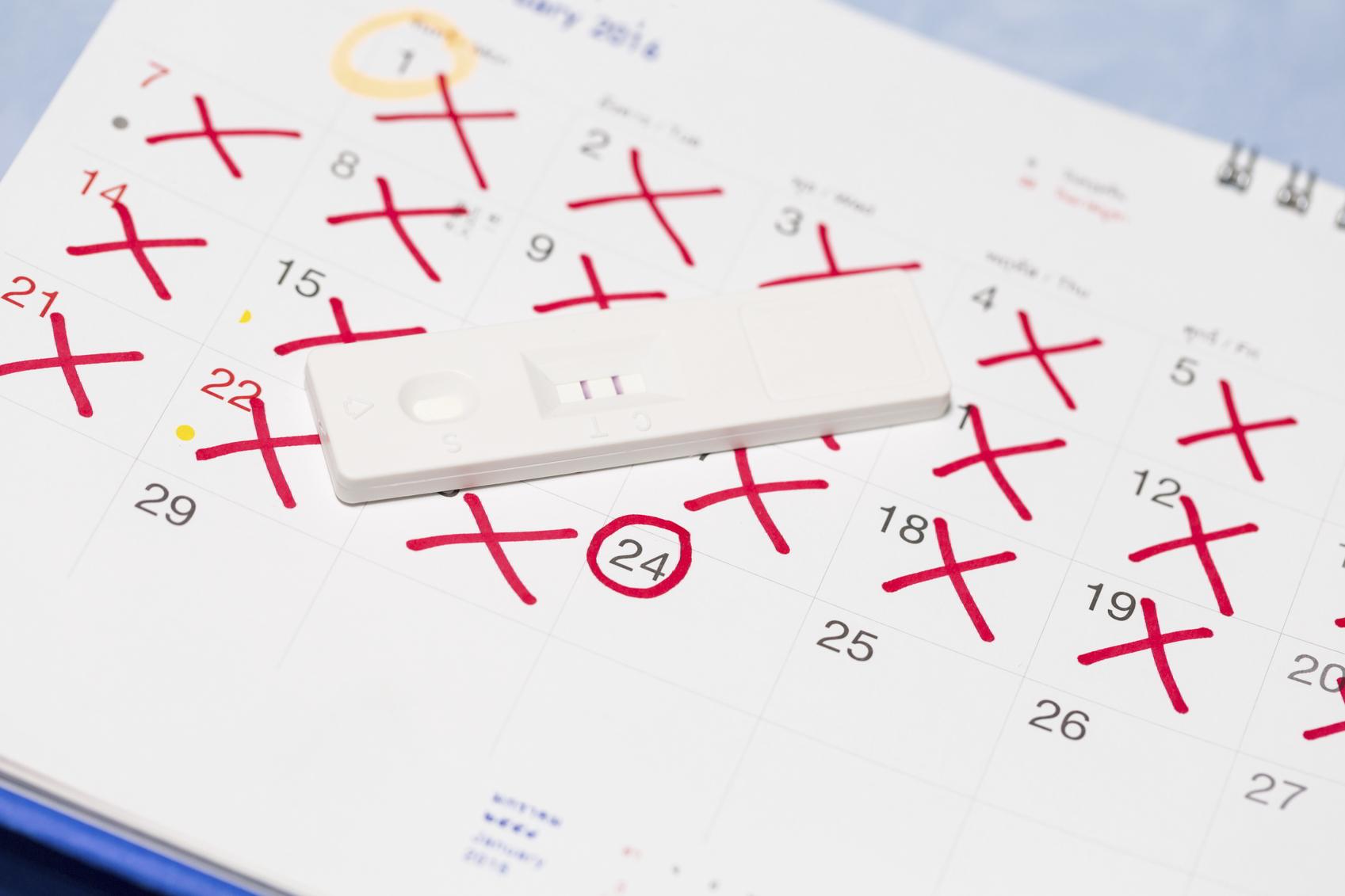 terminsberegner beregn termin eller vigtige datoer i graviditet. Black Bedroom Furniture Sets. Home Design Ideas